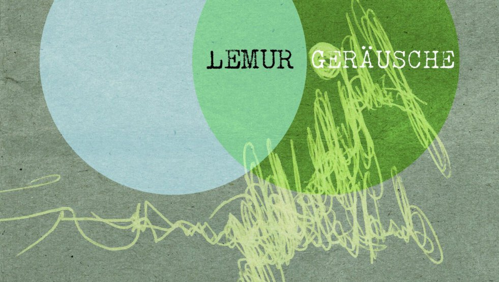 cover lemur gerausche herr von grau