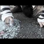 Lea-Won – 'Panorama Rambazamba' (Album / Free-Stream / Video 'Groß machen')
