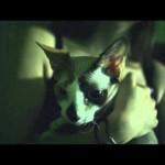 Marten McFly – NichtEinschlafLied (Video)