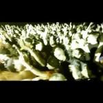 Madchild feat. Slaine from La Coka Nostra & Preva – Grenade Launcher (Video)