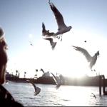 Dramadigs feat. Slowy&12Vince – Fotolovestory (Video)